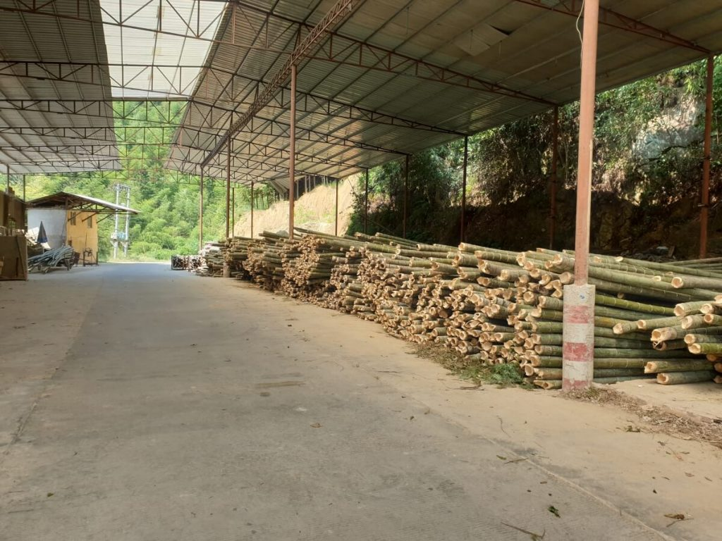 Bambusstämme im Außenlager - Standort: Werk unseres Bambuslieferanten, in welchen die Rohproduktion erfolgt